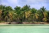Saona island beach - 188718913