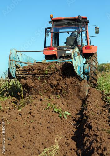 Fotobehang Trekker Digging of potatoes in a field.