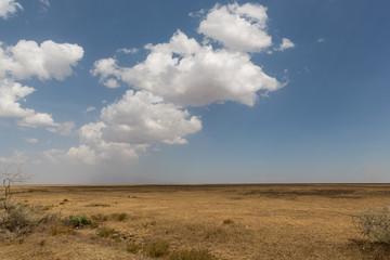 Serengeti - Tansania