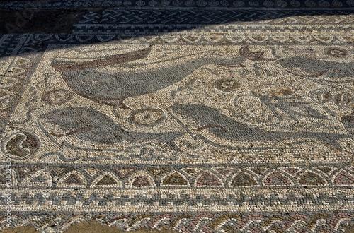 In de dag Stenen Mosaïque romaine de Milreu, Estói, Algarve, Portugal