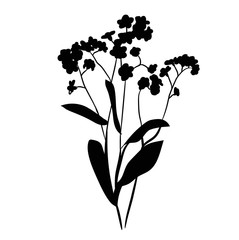 isolated silhouette plant