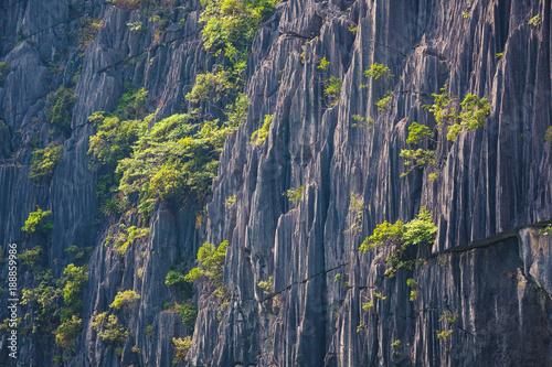 In de dag Stenen Closeup of a karst mountain , rock texture , background