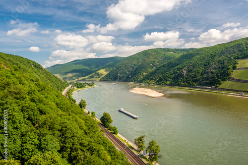 Fotobehang Wijngaard Vineyards at Rhine Valley in Germany