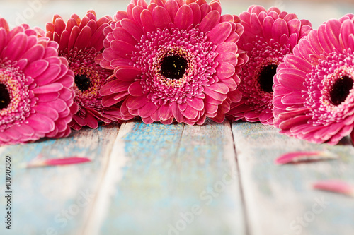 Fotobehang Gerbera Spring gerbera flowers bouquet on rustic wooden background. Birthday, holiday, mother or womans day greeting card..