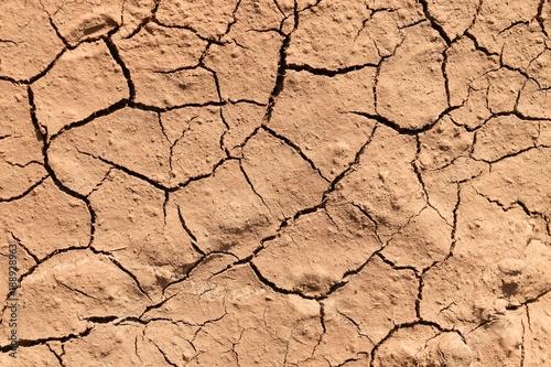 Foto Murales surface broken brown soil for background
