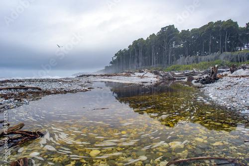 Bruce Bay or Mahitahi is a bay - 188938324