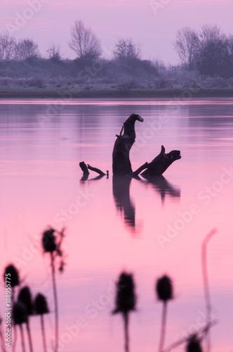 Fotobehang Lichtroze Sunrise on the Saône