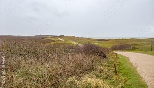 Aluminium Noordzee coastal dune scenery