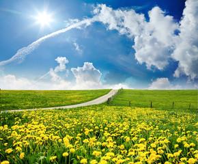 Auszeit im Frühling, Glück, Freude, Entspannung, Lebenslust: leuchtend gelbe Löwenzahnwiese unter blauem Himmel mit Sonne und Wolken :)