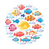 Colorful aquarium fish set in circle vector isolated. Tropical fishes collection