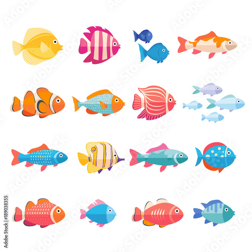 Colorful aquarium fish set vector isolated. Tropical fishes collection