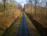 Aerial view of a straight narrow road in a forest in winter - 189044351