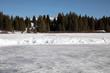 Pond ice rink in San Juan National Forest