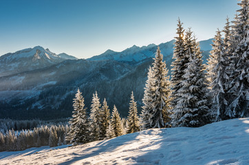 Winter mountain landscape, Tatra mountains, morning