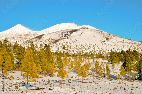 Fotobehang Blauw Winter Landscape