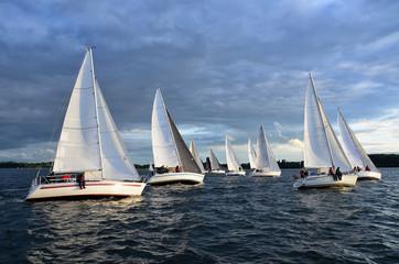 Regatta, Segeln, Yachten, Wettfahrt, Wasser, Himmel, Segelyacht