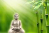 buddha in bamboo garden