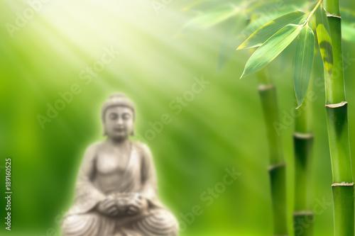 Fotobehang Bamboe buddha in bamboo garden