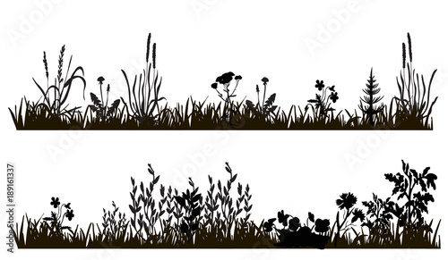 vector isolated silhouette of grass and plants, isolated on white background - 189161337