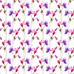 Seamless pattern with Poppy and Crocus flowers