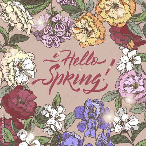 Color romantic vintage greeting card template with Hello Spring brush calligraphy and flowers hand drawn sketch.