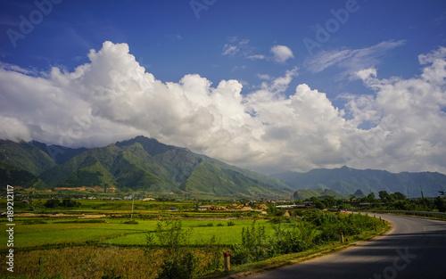Fotobehang Bleke violet Terraced rice field in Northern Vietnam