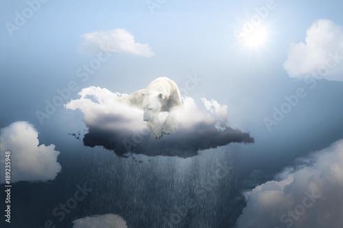 Fotobehang Ijsbeer Trauriger Eisbär auf einer Regenwolke
