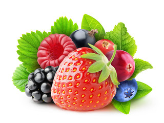 Isolated fresh berries. Pile of strawberry, blackberry, raspberry, black and red currant, cranberry and blueberry fruits with leaves isolated on white background with clipping path