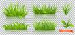 Spring, green grass. 3d realistic vector icon set