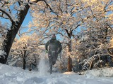 Man running on snow covered path