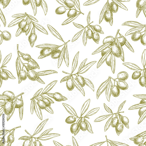 Fototapeta Olives branches on olive vector seamless pattern