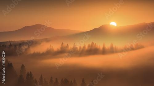 Foto op Plexiglas Herfst First golden rays of rising sun