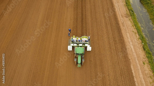 Fotobehang Trekker Aerial view Special tractor equipped with equipment for planting green vegetables and lettuce in the cultivated field. Tractor with workers sows, put salad on the field.