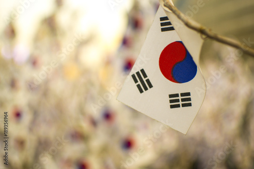 Keuken foto achterwand Seoel A Korean ying yang symbol national flag hanging on a stick, with many other Korean flags out of focus in the background