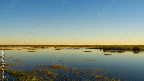 Tuinposter Blauwe jeans USA, Florida, Dawn over everglades landscape