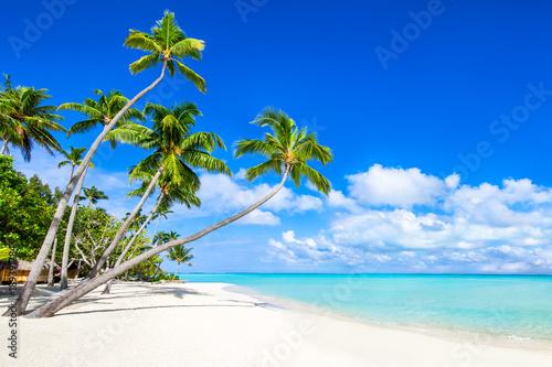 Wakacje na tropikalnej wyspie