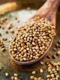 Dried Coriander Seeds -  Indian cuisine. - 189408732