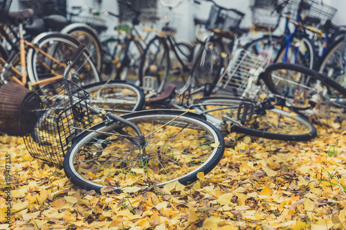 Fotobehang Fiets old abandoned bikes leave in bicycle park in japan autumn