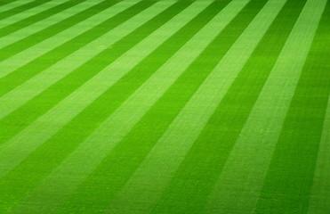 Leeres Spielfeld in einem Fußballstadion