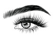Hand-drawn woman's fresh luxurious eye with perfectly shaped eyebrows and full lashes. Idea for business visit card, typography vector. Perfect salon look.