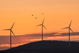 Beautiful landscape with silhouettes of three wind turbines on a hill in the sunset light and birds, Dobrogea, Romania - 189514310