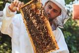 Beekeeper collecting honey - 189521119