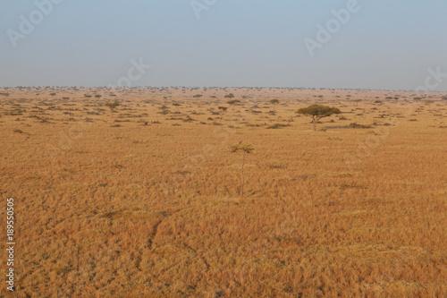 Fotobehang Bleke violet Landscape in Kenya