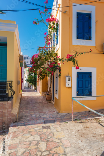 Flowers and walls of neoclassical houses in Nimborio on island of Halki (Greece)