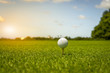 Golf ball put on tee green grass prepare  teeing to golf court
