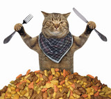 The cat with a knife and a fork is near a pile of dry food. White background. - 189579102