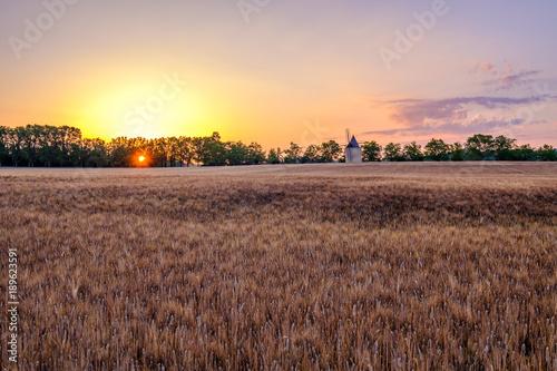 Deurstickers Diepbruine Paysage rural de Provence. France. Champ de blé et moulin à vent. Lever de soleil.