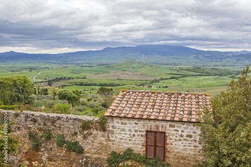Fotobehang Olijf Tuscan landscapes. Pienza. Italy