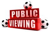 Public Viewing - 189635175