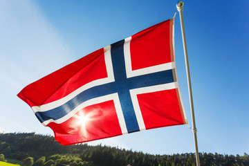Flag of Norway waving in the wind against summer forest landscape in sunny day.